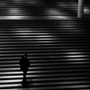 Black and White - Street Photography - Germany- StairsPinakothek...