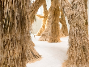 """Campana brothers bring """"nature indoors"""" with bristly installation"""