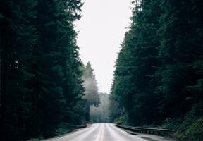 Highway 101, OregonInstagram by Whitney Hayes...