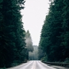 Highway 101, OregonInstagram by Whitney Hayes ...