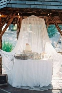 Use a netted canopy to keep bugs out of desserts and cake.