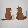 When a beaver seduces a platypus. #9gag