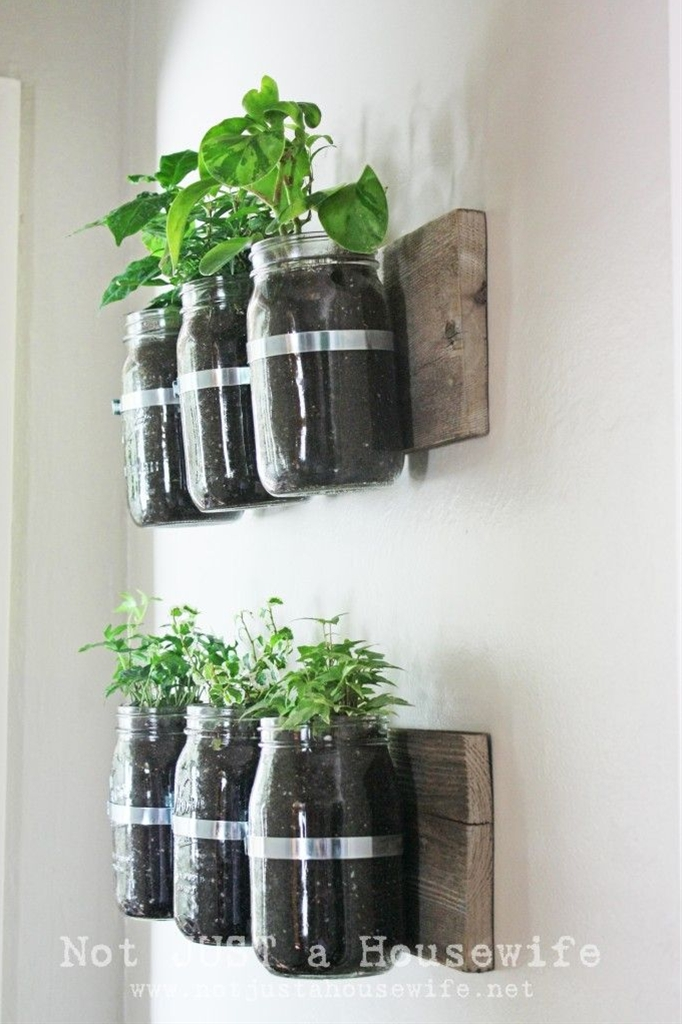 I used an old board, some pipe clamps, and some mason jar to make this planter that goes on my wall.
