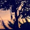 Lovesick by Renata Ramsini (idenchanted.com)