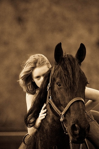 horse photography idea by sagetopaz on flickr