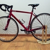 Frosta bike stand