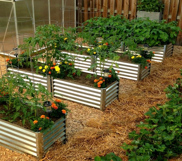 Our corrugated metal raised beds are stronger than other garden bed options and allow 