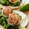 Green Scallop Tacos