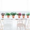Bridal Shower Flower Workshop