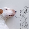 A guy's ex-wife left him with nothing but bare walls and his dog, Jimmy Choo, so he turned them into art.