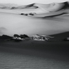 Mesquite Flat Sand Dunes, Death Valley by radicaladventure...