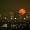 Nature派 赤い月 Blood Moon Shinjuku, Tokyo, Japan