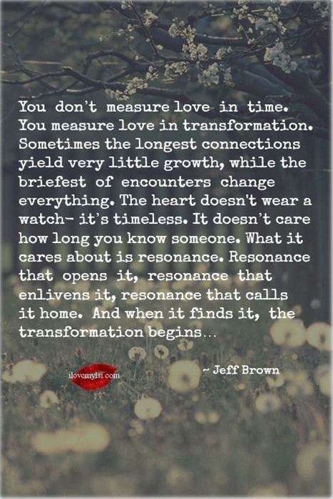 You measure love in transformation. Sometimes the longest connections yield very little growth, while the briefest of encounters change everything... ~ Jeff Brown.