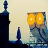 Mussolhttp://albertgracia14.wix.com/fotografia by Albert Gracia...
