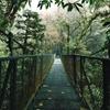 Hanging BridgesSelvatura Park, CR by Andrew Simoni...