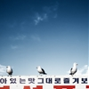 Three Seagulls on billboard. Incheon, South Korea, March 28,...