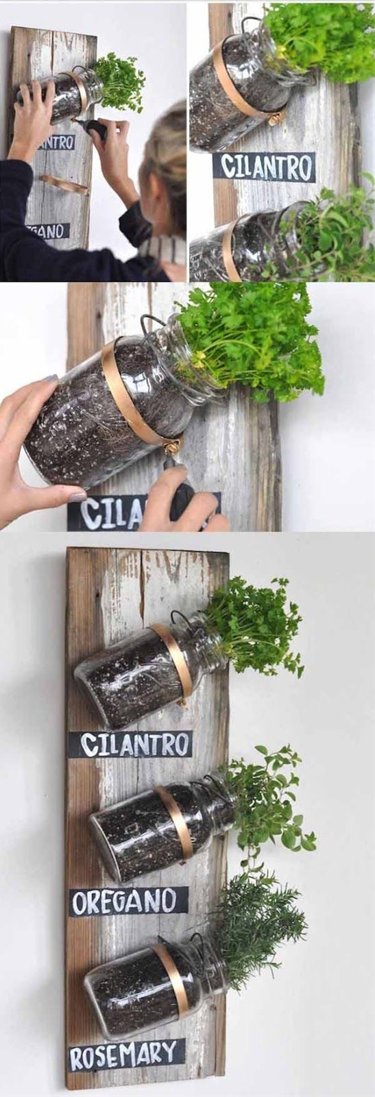 Attractive & clever way to plant fresh herbs without them taking over your entire yard!