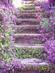 i think this is gorgeous... a stairway up from the garden to the house....