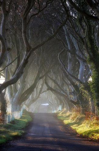 This place looks so other worldly that it was actually a filming location for Game of Thrones.