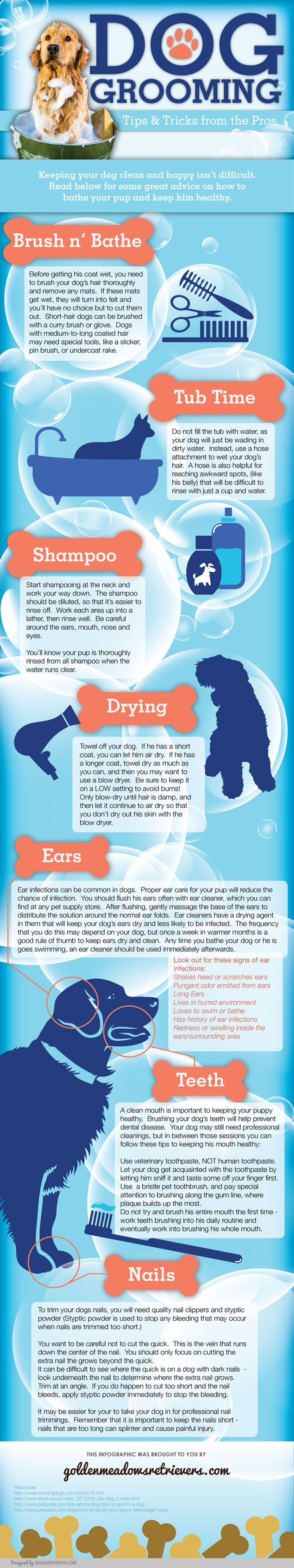 Are you an animal lover? Maybe you're a pet owner, and as you know it can be expensive to have a furry little friend. Bringing your friend to the vet, buying food, treats, toys, and of course having them groomed, can sure add up in bills. Well here's some tips to help you save and groom your own fur-baby!
