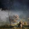 Riding a horse by Saelanwangsa