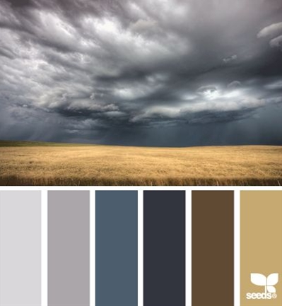 excluding that dark brown (if I used that it would be sparingly).  Sand, greys and lighter blues for main rooms, dark blue for bedroom, grey for master bath.