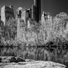 Central Park, NYC by zoeblue photography ...