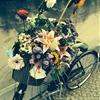 Bike Stories:Ai Wei Wei's Bikefrom the Ai Wei Wei exhibition in...