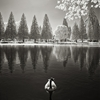 Canada Goose on Crystal Springs Lake | infrared by Bruce Couch ...