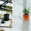 DIY: Blueberry Café's Hanging Planters