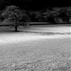 Jack frost… by blacksmithseye.tumblr.com