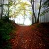 walk on by frau-freimuth.tumblr.com