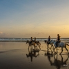 Sunset horseback ride down Kuta beach - Bali - 2014 by...