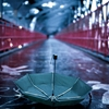 Umbrella. Leica M7. Williamsburg Bridge, NYC. 2013. by...