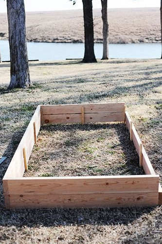 I have raised vegetable beds around my house, and I love them. They provide good drainage for your plants, and you have more flexibility about where to plant different things. You can get creative and stack the beds, growing herbs in the smaller top area and veggies around the bottom. Or you can create designs with your beds, using geometric shapes to create some sort of pattern.
