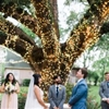 Organic and Romantic Texas Wedding