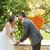 California Orange Grove Summer Wedding